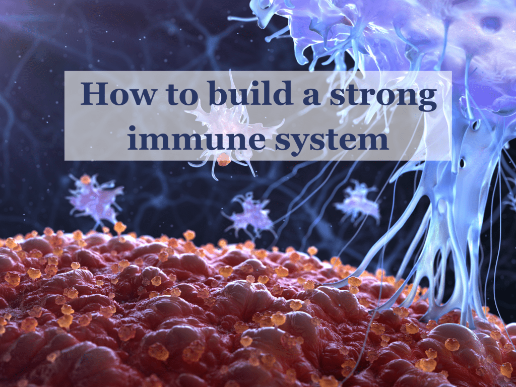 How to build a strong immune system